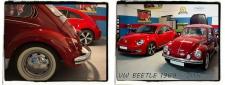BEETLE VW ESCARABAJO PULIDO COCHE CLASICO PULIR COCHE MADRID 1